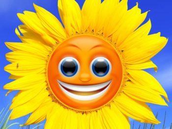 Permalink to: Pourquoi aimer certaines fortes chaleurs?